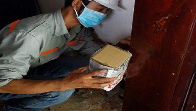 Công ty diệt mối tại nhà Trần Quang