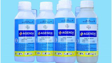 Thuốc phòng chống mối Agenda 25EC