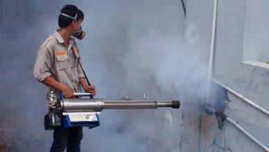 Dịch vụ diệt côn trùng tại Tuyên Quang