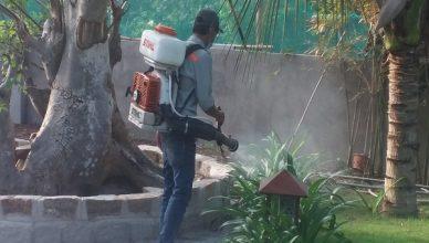 Dịch vụ diệt côn trùng tại Bắc Giang